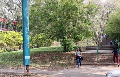O local onde o estudante foi baleado: atendimento rápido da Guarda Universitária Foto: Cecília Bastos/Jornal da USP